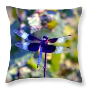 Sunning Dragonfly Throw Pillow