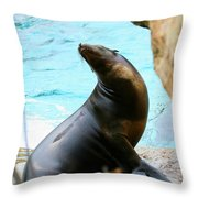 Sunning Sea Lion Throw Pillow