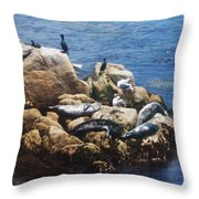 Sunning Seals Throw Pillow