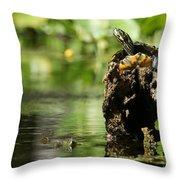 Sunning Turtle Throw Pillow