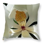 Sunny And Shy Magnolia Throw Pillow