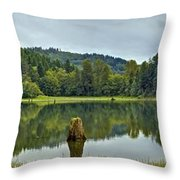 Sunny Beach Point 1 Throw Pillow