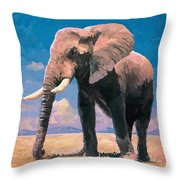 Sunny Day In The Savanna Throw Pillow