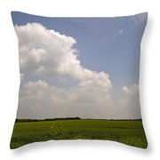 Sunny Day In The Country Throw Pillow