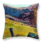Sunny Day In The Countryside Throw Pillow