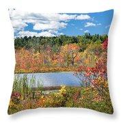 Sunny Fall Day Throw Pillow