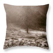 Sunny Frosty Douglassville Throw Pillow