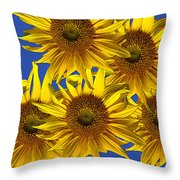 Sunny Gets Blue Throw Pillow