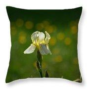 Sunny Iris Throw Pillow