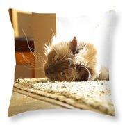 Sunny Jack Throw Pillow