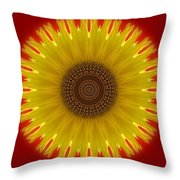 Sunny Kaleidoscope Throw Pillow