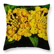 Sunny Lantana Throw Pillow