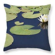 Sunny Lily Pond Throw Pillow