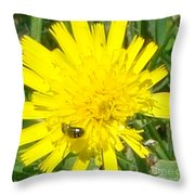 Sunny Lunch Throw Pillow