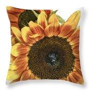 Sunny Pair Throw Pillow