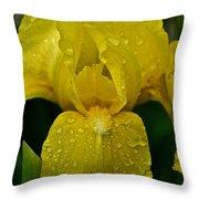 Sunny Rain Throw Pillow