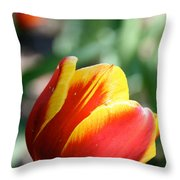 Sunny Rays Throw Pillow
