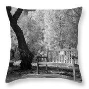 Sunny Seat Throw Pillow