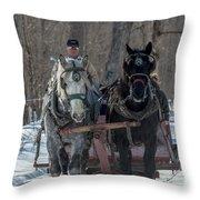 Sunny Sleigh Ride Throw Pillow