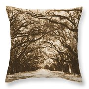 Sunny Southern Day With Old World Framing Throw Pillow