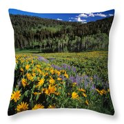 Sunny Spring Day Throw Pillow