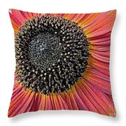 Sunny Summer Sunflower Throw Pillow