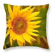 Sunny Sunflower Fields Throw Pillow