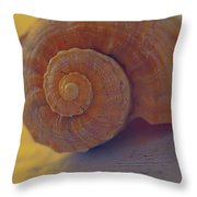 Sunny Thoughts Throw Pillow by Bonnie Bruno