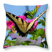 Sunny Tiger Swallowtail  Throw Pillow