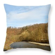 Sunny Valley Throw Pillow