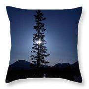 Sunny Winter Pine Throw Pillow