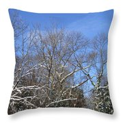 Sunny Winter Sky Throw Pillow