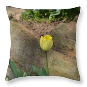 Sunny Yellow Tulips Series  Picture B Throw Pillow