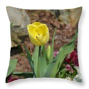 Sunny Yellow Tulips Series  Picture C Throw Pillow