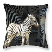 Sunny Zebra Throw Pillow