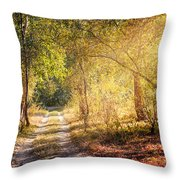 Sunray In The Autumn Forest Throw Pillow