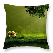 Sunrays In An Ireland Sheep Pasture  Throw Pillow