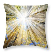 Sunrays In The Forest Throw Pillow