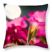 Sunrise 1 - Featured 3 Throw Pillow