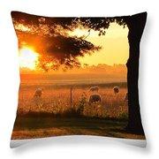 Sunrise 365 15 Throw Pillow