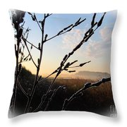 Sunrise 365 2 Throw Pillow