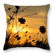 Sunrise 365 28 Throw Pillow