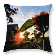 Sunrise 365 29 Throw Pillow