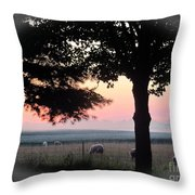 Sunrise 365 35 Throw Pillow