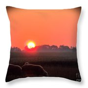 Sunrise 365 9 Throw Pillow