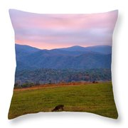 Sunrise And Deer In Cades Cove Throw Pillow