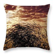 Sunrise And Lacy  Tree Throw Pillow