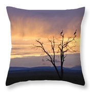 Sunrise And Rain Throw Pillow