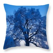 Sunrise And Tree Throw Pillow