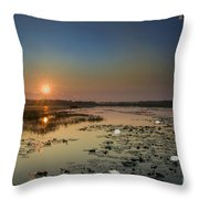 Sunrise And Water Lilies Throw Pillow